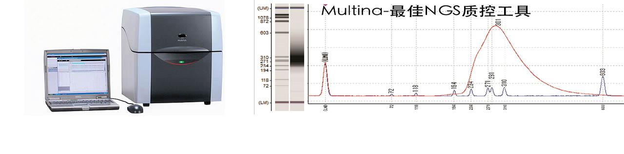 MultiNA微芯片电泳仪